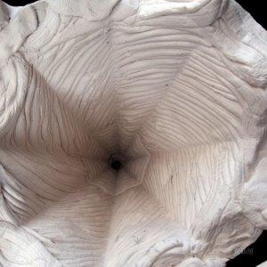 画像5: 綱木紋・円錐大・オフホワイト〜ライトグレー