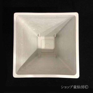 画像3: 樹脂鉢・ステータススクエアポットL・ホワイト