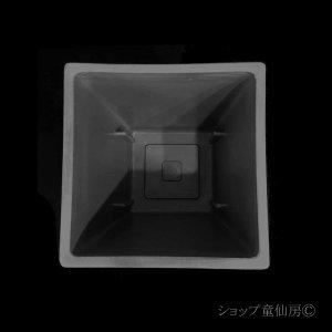 画像3: 樹脂鉢・ステータススクエアポットM・ブラック