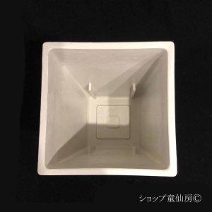 画像3: 樹脂鉢・ステータススクエアポットM・ホワイト