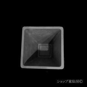 画像3: 樹脂鉢・ステータススクエアポットS・ブラック