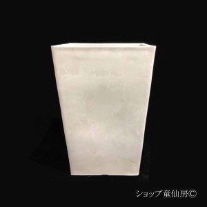 画像2: 樹脂鉢・ステータススクエアポットM・ホワイト