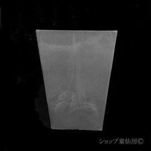 画像2: 樹脂鉢・ステータススクエアポットM・ブラック