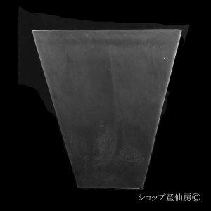 画像2: 樹脂鉢・ステータススクエアポットL・ブラック